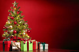 extend the life of a christmas tree zahinoa