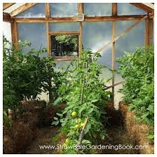 setup a straw bale garden inside a greenhouse for a longer growing