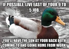 Animated Gif Meme - advice duck animated gif meme