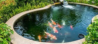 submersible pond maintenance doityourself