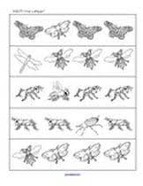 insects theme activities and printables for preschool and