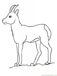 goat coloring pages pixelpictart com