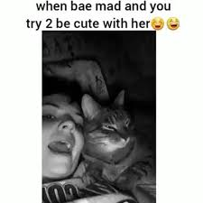Relationship Memes For Her - 20 cute relationship memes for your bae sayingimages com