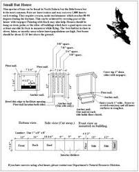 bold design free house plans with bats 2 bat houses at