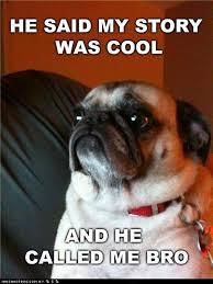 Funny Pug Memes - funny pug meme called me bro