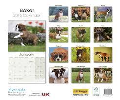 boxer dog christmas cards christmas lights decoration