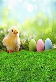 Easter Backdrops 31 Best Easter Backdrop Images On Pinterest Photo Backgrounds
