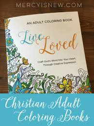 christian coloring books have you seen these what a