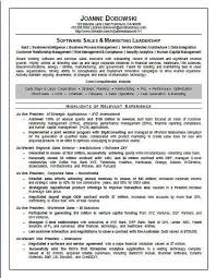 Computer Skills On Resume Sample by 266 Best Resume Examples Images On Pinterest Resume Examples