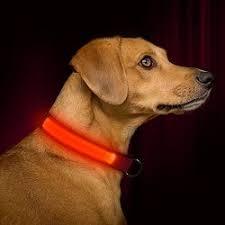 collar light for small dogs bseen led dog collar soft nylon dog collar light up flashing pet