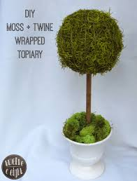 What Is A Topiary Tree Moss Twine Wrapped Topiary