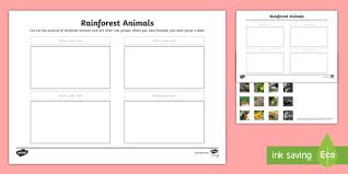 rainforest animals sorting activity sheet rainforest animals
