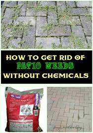 How To Clean Patio Slabs Without Pressure Washer How To Get Rid Of Patio Weeds Without Chemicals