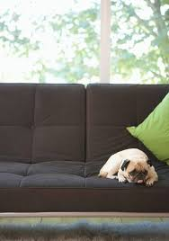 How To Make Sofa Cover How To Make Couch Covers For Dogs Cuteness