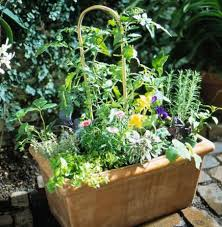 Garden Containers Large - enjoy a vegetable container garden midwest living