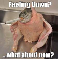 Feeling Down Meme - smoking fish bird quickmeme