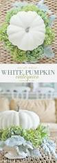 thanksgiving decorations clearance 2466 best images about fall halloween on pinterest fall home