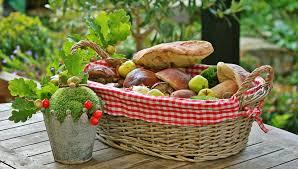 free photo autumn mushrooms basket collect free image on