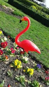 pink lawn flamingo garden ornament stretch neck aspatrius http