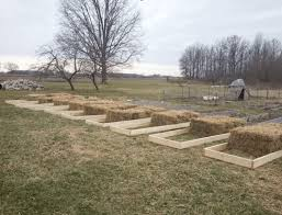 straw bale gardening my experiences dk preppers 10