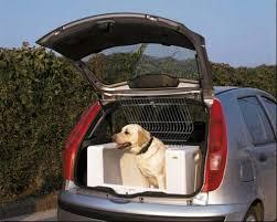 porta cani per auto trasporto in auto associazione orme nel cuore onlus