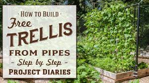 how to make a free trellis from pipes a complete step by step