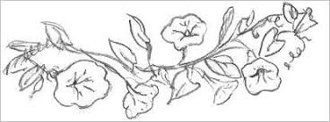 easy sketch images easy flowers to draw