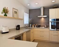 modern linoleum flooring kitchen and