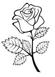 imagenes para colorear rosas flor rosa para colorear 3 3 flores rosas para pintar efil info