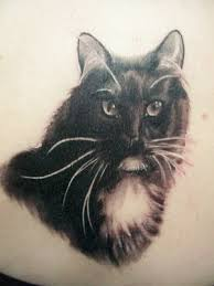 milozjam cats tattoo