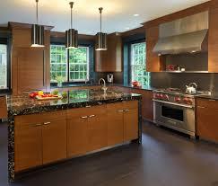 Black Countertop Kitchen - cool subzero refrigerator vogue dc metro contemporary kitchen