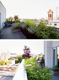 small trees in small gardens about the garden magazine creating a garden oasis in the city the new york times