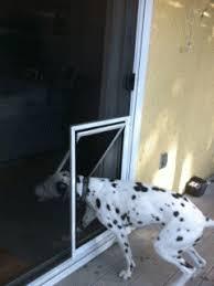 Pet Doors For Patio Doors Love The Idea Of A Pet Door Installed In The Screen Rather Than