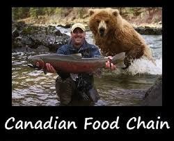 Canadian Meme - canadian food chain meme