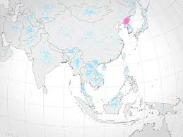 Show Me The Map Of The United States Of America by If Americans Can Find North Korea On A Map They U0027re More Likely To