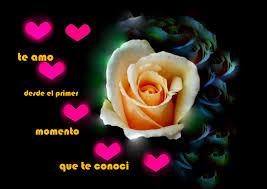 imagenes para enamorar con flores imágenes con frases para enamorar banco de imagenes gratis