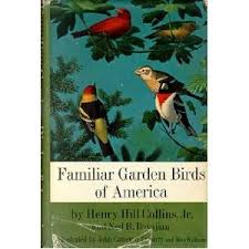 Birds In Your Backyard Familiar Garden Birds Of America An Illustrated Guide To The