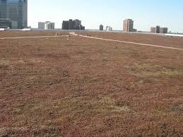 target center minnesota green roofs council
