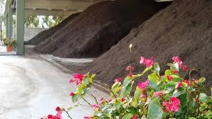 si e cic un anno di raccolta organico e compost nel rapporto cic tersan puglia