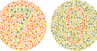 Pedigree Chart For Color Blindness Color Blindness Explained Causes Symptoms How To Adapt