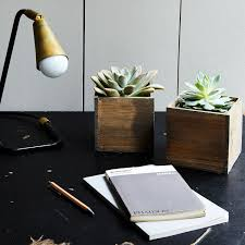 307 Best Kitchen Images On by Diy Succulent And Wood Planter Set Of 2 On Food52