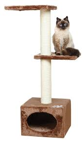 Trixie Cat Hammock by Amazon Com Trixie Pet Products Palamos Cat Tree Beige Cat