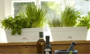 Window Sill Garden Inspiration Windowsill Herb Garden Indoor