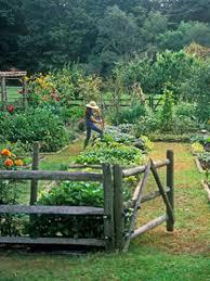 Gardening Trends 2017 Pinterest Gardening Ideas Outdoor Garden Trends