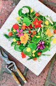 Salad With Edible Flowers - how to eat flowers the view from great island