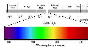 Full Spectrum Led Grow Lights What Are Full Spectrum Led Grow Lights Kalvin Zhang Pulse
