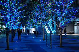 blue decorations pictures photos and images for
