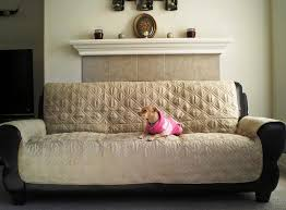 Leather Sofa And Dogs Furniture Covers For Leather Sofas The Quintessential Handbook