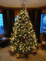 christmas decoration photo decorating a tree with burlap ribbon