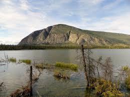 Teh Yakon pine lake in the yukon photo